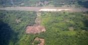 Honduras: Narcotráfico Aniquila Bosques