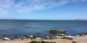 Alquiler  Punta del Este Punta Ballena