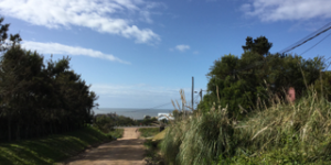 Alquiler  Punta del Este Balneario Buenos Aires